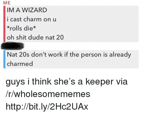 Dude, Shit, and Work: ME  IM A WIZARD  i cast charm on u  *rolls die*  oh shit dude nat 20  Nat 20s don't work if the person is already  charmed guys i think she's a keeper via /r/wholesomememes http://bit.ly/2Hc2UAx