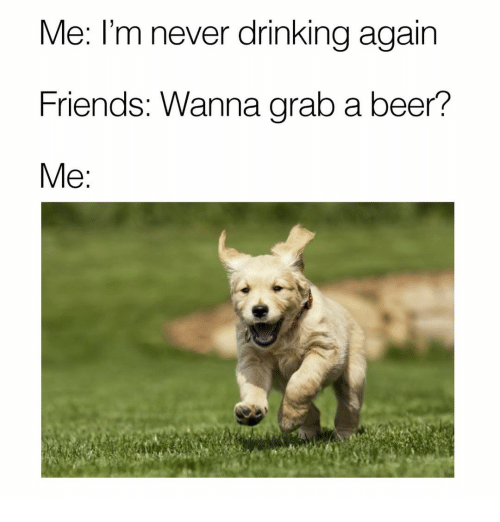 Beer, Memes, and 🤖: Me: I'm never drinking again  Friends: Wanna grab a beer?  Me