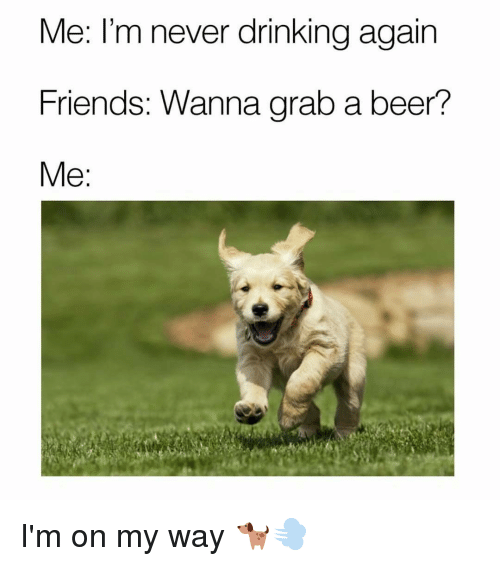 Beer, Drinking, and Friends: Me: I'm never drinking again  Friends: Wanna grab a beer?  Me I'm on my way 🐕💨