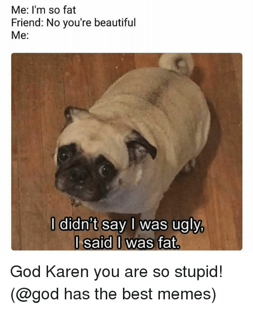 Beautiful, God, and Memes: Me: I'm so fat  Friend: No you're beautiful  Me:  l didn't say l was ugly  l said I was fat  J said O God Karen you are so stupid! (@god has the best memes)