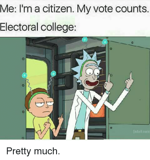 me ima citizen my vote counts electoral college ladullswin pretty 6093478 ✅ 25 best memes about electoral college electoral college memes,Electoral College Memes