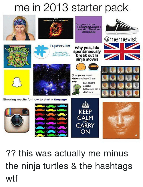 Dinosaur, The Hunger Games, and Memes: me in 2013 starter pack  HUNGER GAMES  Teenager Post # 7286  Potatoes have skin. I  have skin. Therefore  am a potato  @memevist  TagsFortikes why yes, i do  cery and tastespontaneously  break out in  ninja moves -  Just gonna stand  there and watch me  roar but thae's  alright  because i am a  dinosaur  Showing results for how to start a fanpage  KEEP  CALM  AND  CARRY  ON ?? this was actually me minus the ninja turtles & the hashtags wtf
