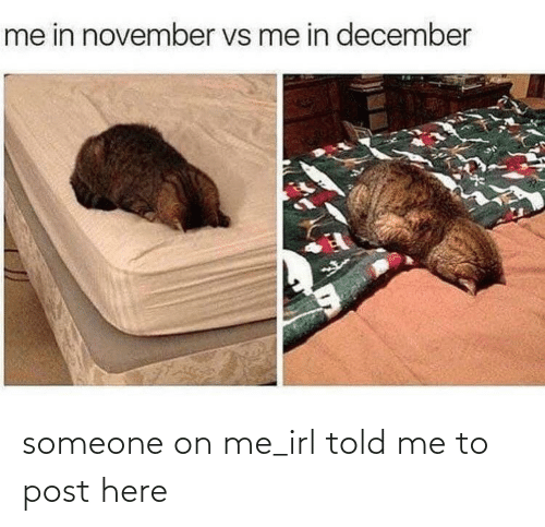 Irl, Me IRL, and December: me in november vs me in december someone on me_irl told me to post here