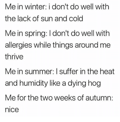Funny, Tumblr, and Winter: Me in winter: i don't do well with  the lack of sun and cold  Me in spring: I don't do well with  allergies while things around me  thrive  Me in summer: I suffer in the heat  and humidity like a dying hog  Me for the two weeks of autumn:  nice