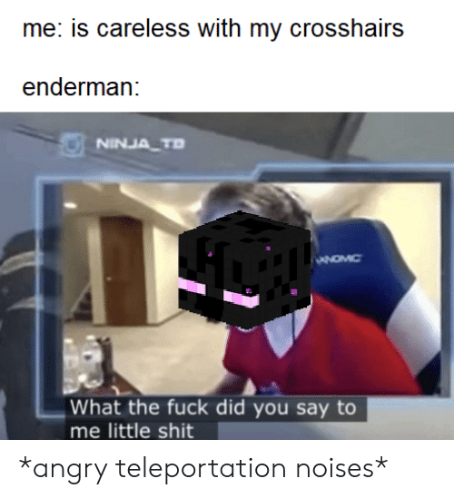 Shit, Fuck, and Ninja: me: is careless with my crosshairs  enderman:  NINJA TD  What the fuck did you say to  me little shit *angry teleportation noises*
