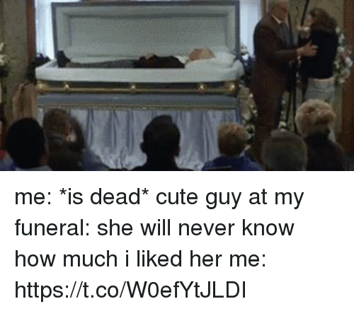 Cute, Girl Memes, and Never: me: *is dead* cute guy at my funeral: she will never know how much i liked her  me: https://t.co/W0efYtJLDI