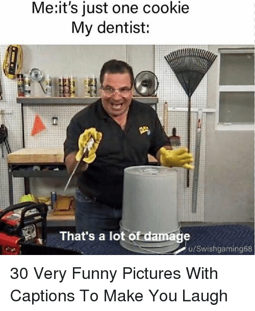 Funny, Pictures, and Cookie: Me:it's just one cookie  My dentist:  That's a lot of damage  u/Swishgaming68 30 Very Funny Pictures With Captions To Make You Laugh
