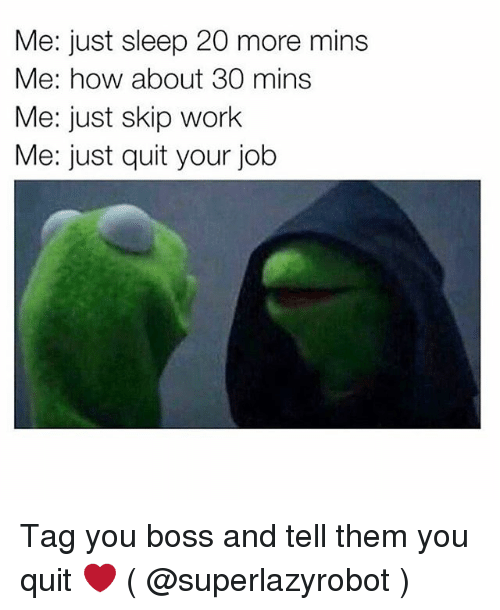 Work, Girl Memes, and Sleep: Me: just sleep 20 more mins  Me: how about 30 mins  Me: just skip work  Me: just quit your job Tag you boss and tell them you quit ❤️ ( @superlazyrobot )