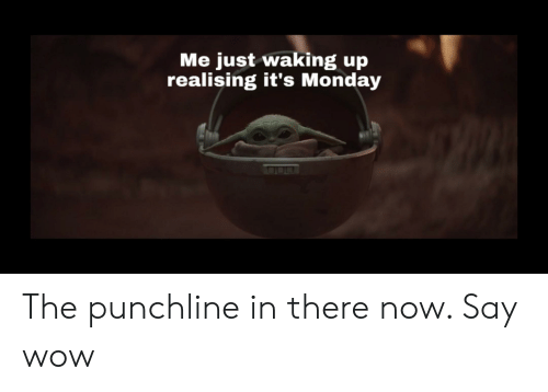 Wow, Monday, and Dank Memes: Me just waking up  realising it's Monday The punchline in there now. Say wow