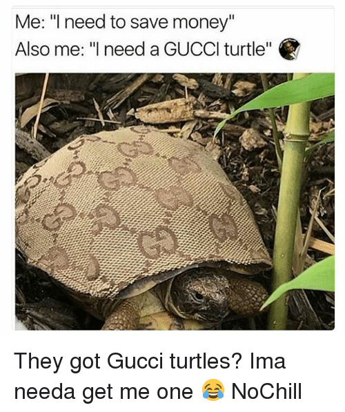 """Funny, Gucci, and Money: Me: l need to save money""""  Also me: """"need a GUCCl turtle"""" They got Gucci turtles? Ima needa get me one 😂 NoChill"""