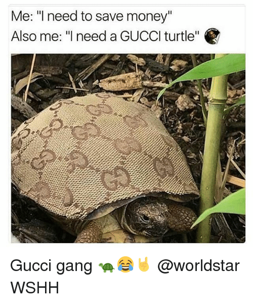 """Gucci, Memes, and Money: Me: """"l need to save money""""  Also me: """"need a GUCCl turtle"""" Gucci gang 🐢😂🤘 @worldstar WSHH"""