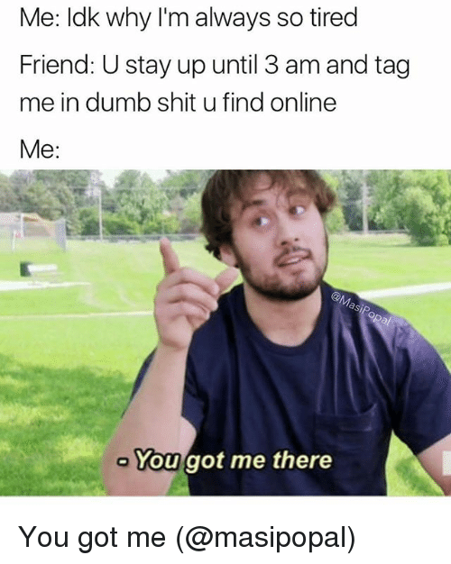 Dumb, Memes, and Shit: Me: ldk why I'm always so tired  Friend: U stay up until 3 am and tag  me in dumb shit u find online  Me:  You got me there You got me (@masipopal)