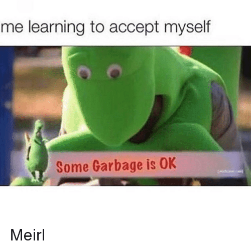 MeIRL, Garbage, and Accept: me learning to accept myself  Some Garbage is OK Meirl