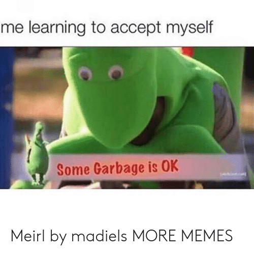 Dank, Memes, and Target: me learning to accept myself  Some Garbage is OK Meirl by madiels MORE MEMES