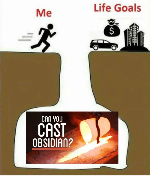 Goals, Life, and Can: Me  Life Goals  CAN YOU  CAST  OBSIDIAn?  AN2
