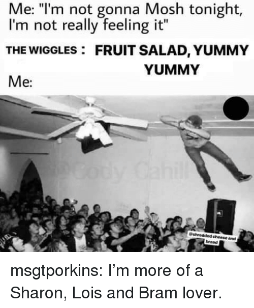 "Tumblr, Blog, and Yummy: Me: ""l'm not gonna Mosh tonight,  I'm not really feeling it""  THE WIGGLES: FRUIT SALAD, YUMMY  Me:  YUMMY  cheese and  bread msgtporkins:  I'm more of a Sharon, Lois and Bram lover."