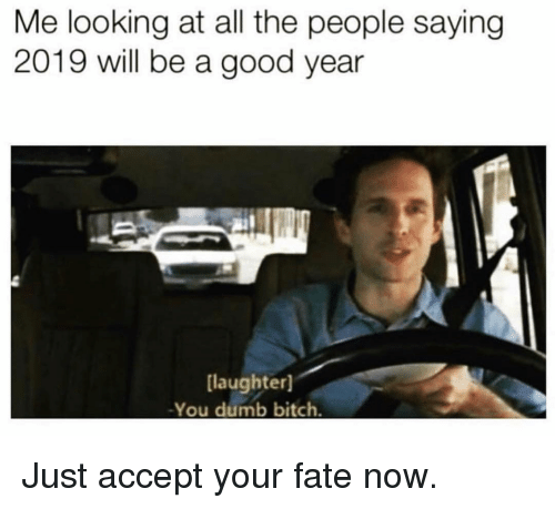 Bitch, Dumb, and Memes: Me looking at all the people saying  2019 will be a good year  laughter]  -You dumb bitch Just accept your fate now.
