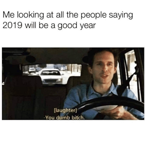 Bitch, Dumb, and Good: Me looking at all the people saying  2019 will be a good year  [laughter]  -You dumb bitch.