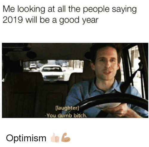 Bitch, Dumb, and Good: Me looking at all the people saying  2019 will be a good year  laughter]  -You dumb bitch. Optimism 👍🏻💪🏽