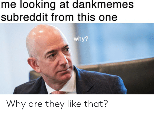 Me Looking at Dankmemes Subreddit From This One Why? Why Are They