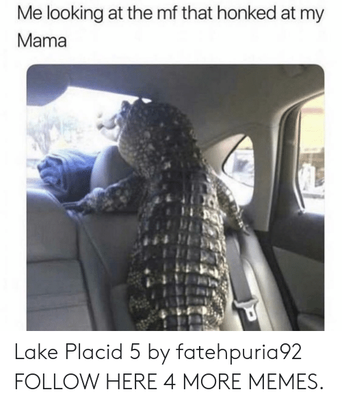 Dank, Memes, and Target: Me looking at the mf that honked at my  Mama  ORA Lake Placid 5 by fatehpuria92 FOLLOW HERE 4 MORE MEMES.