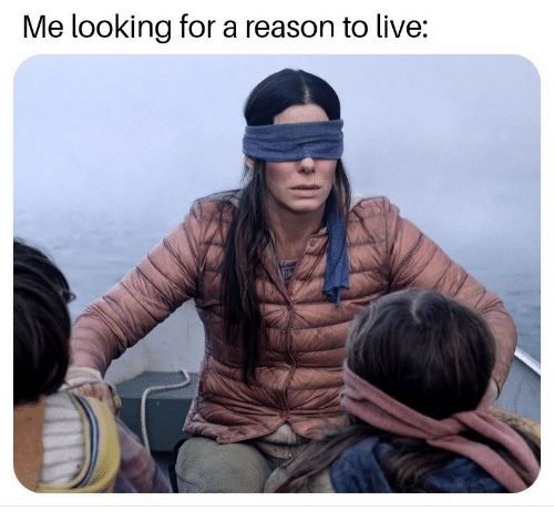 Live, Reason, and Looking: Me looking for a reason to live: