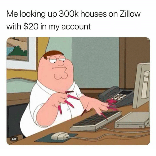 Gif, Memes, and 🤖: Me looking up 300k houses on Zillow  with $20 in my account  GIF