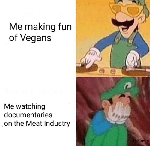 Fun, Meat, and Making: Me making fun  of Vegans  Me watching  documentaries  on the Meat Industry  di