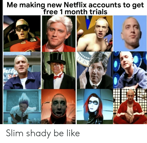Me Making New Netflix Accounts to Get Free 1 Month Trials Slim Shady
