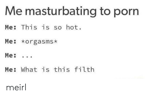 Porn, What Is, and MeIRL: Me masturbating to porn  Me: This is so hot.  Me orgasms*  Me: What is this filth meirl