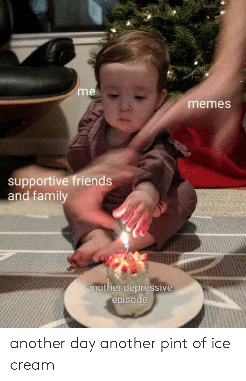 Friends, Memes, and Ice Cream: me  memes  supportive friends  and famil  nother depressive  episode another day another pint of ice cream