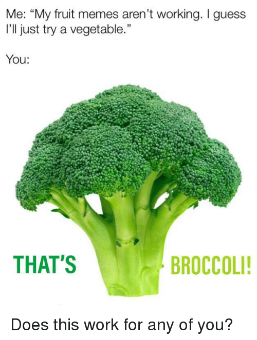"""Memes, Reddit, and Work: Me: """"My fruit memes aren't working. I guess  I'll just try a vegetable.""""  19  You:  THAT'S  BROCCOLI"""