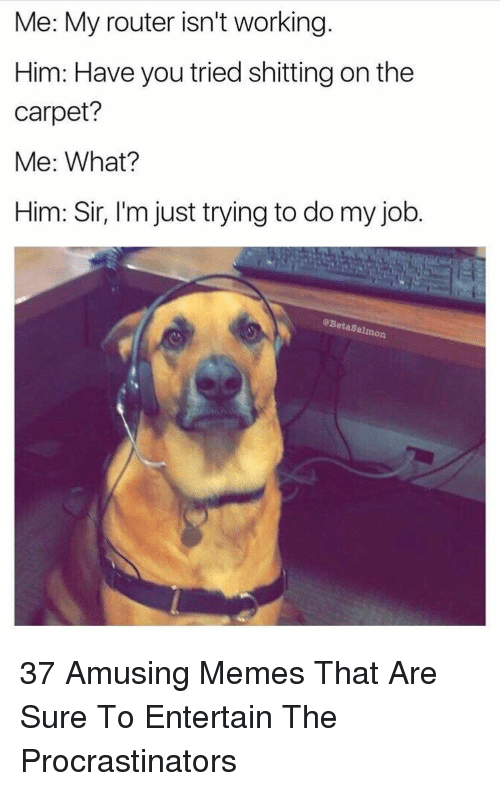 Memes, Router, and Job: Me: My router isn't working.  Him: Have you tried shitting on the  carpet?  Me: What?  Him: Sir, I'm just trying to do my job.  eBetaSal 37 Amusing Memes That Are Sure To Entertain The Procrastinators