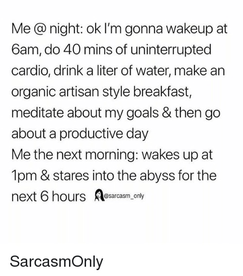 Funny, Goals, and Memes: Me @ night: ok I'm gonna wakeup at  6am, do 40 mins of uninterrupted  cardio, drink a liter of water, make an  organic artisan style breakfast,  meditate about my goals & then go  about a productive day  Me the next morning: wakes up at  1pm & stares into the abyss for the  next 6 hours sarcasm, only SarcasmOnly