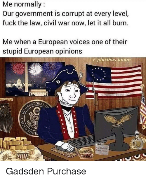 Civil War, Fuck, and Dank Memes: Me normally  Our government is corrupt at every level,  fuck the law, civil war now, let it all burn.  Me when a European voices one of their  stupid European opinions  E pluribus unum  T SEA  ATE  Her MaRI