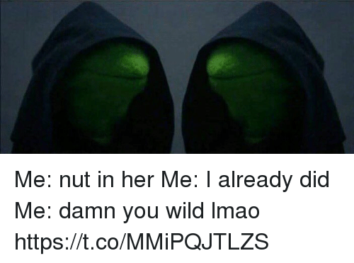 Lmao, Memes, and Wild: Me: nut in her Me: I already did Me: damn you wild lmao https://t.co/MMiPQJTLZS