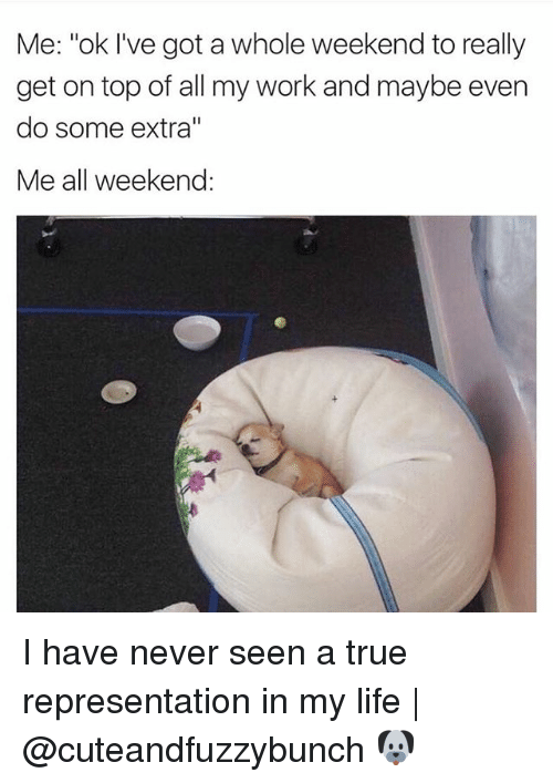 "Life, Memes, and True: Me: ""ok I've got a whole weekend to really  get on top of all my work and maybe even  do some extra""  Me all weekend: I have never seen a true representation in my life 