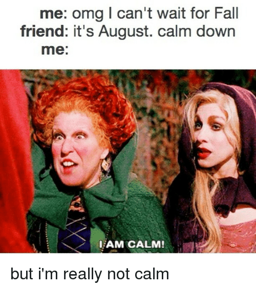 Fall, Omg, and Relatable: me: omg I can't wait for Fall  friend: it's August. calm down  me:  AM CALM! but i'm really not calm