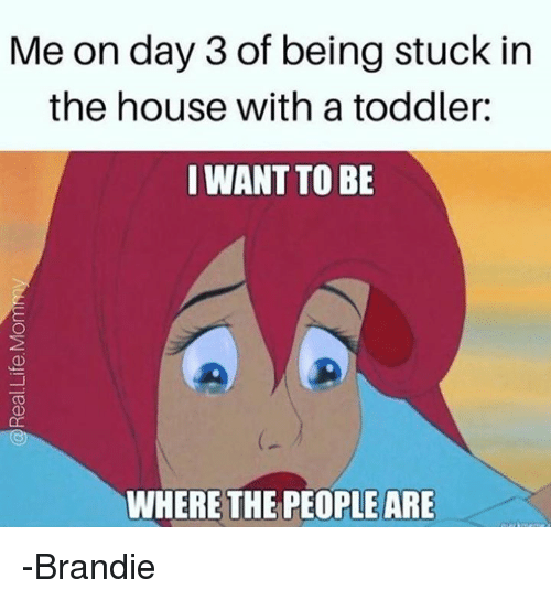 Memes, Brandy, and 🤖: Me on day 3 of being stuck in  the house with a toddler:  I WANT TO BE  WHERE THE PEOPLE ARE -Brandie