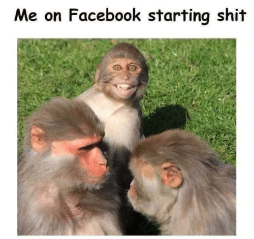 Facebook, Memes, and Shit: Me on Facebook starting shit
