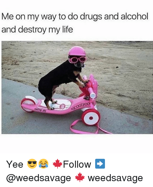 Drugs, Life, and Memes: Me on my way to do drugs and alcohol  and destroy my life Yee 😎😂 🍁Follow ➡ @weedsavage 🍁 weedsavage