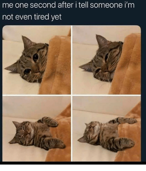 Memes, 🤖, and One: me one second after i tell someone i'm  not even tired yet