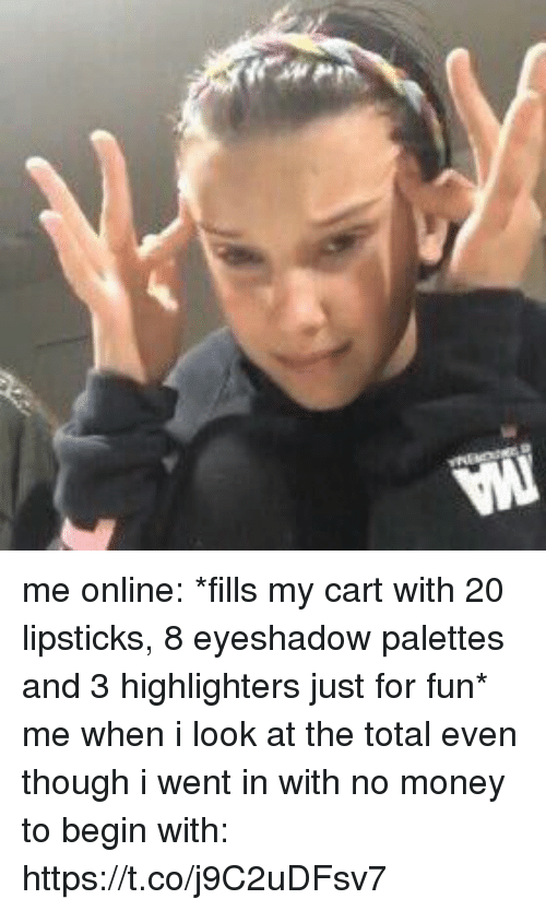 Money, Girl Memes, and Fun: me online: *fills my cart with 20 lipsticks, 8 eyeshadow palettes and 3 highlighters just for fun*  me when i look at the total even though i went in with no money to begin with: https://t.co/j9C2uDFsv7