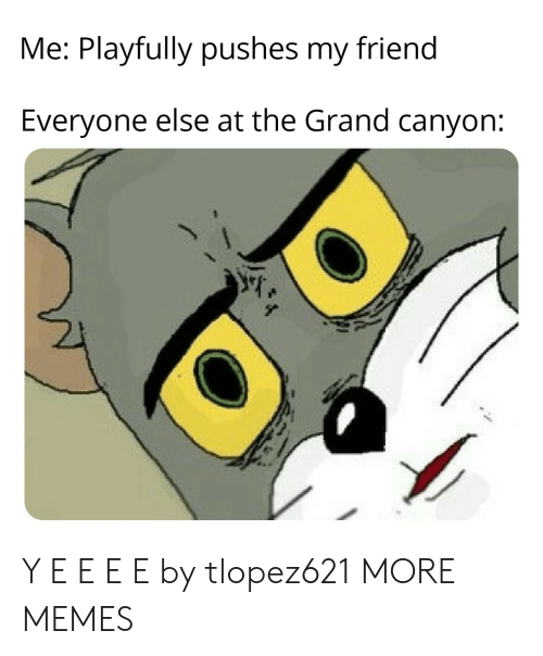 Dank, Memes, and Target: Me: Playfully pushes my friend  Everyone else at the Grand canyon: Y E E E E by tlopez621 MORE MEMES