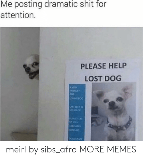 Dank, Dogs, and Memes: Me posting dramatic shit for  attention.  PLEASE HELP  LOST DOG  AVERY  FRENDLY  AND  LOWNG DOG  LAST SEEN IN  MY HOUSE  PLEASE TEXT  OR CALL  123456765  M755-4321  DOGS KISSES meirl by sibs_afro MORE MEMES