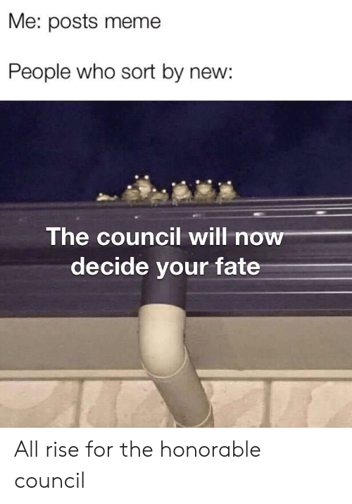 Meme, Fate, and Who: Me: posts meme  People who sort by new:  The council will now  decide your fate All rise for the honorable council