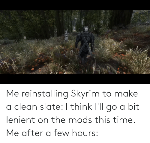 Me Reinstalling Skyrim To Make A Clean Slate I Think I Ll Go A Bit
