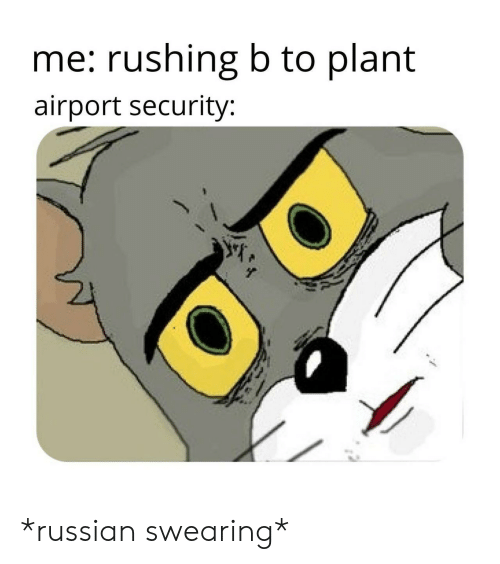 Russian, Security, and  Rushing: me: rushing b to plant  airport security: *russian swearing*