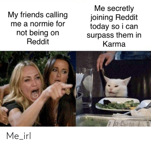 Friends, Reddit, and Karma: Me secretly  joining Reddit  today so i can  surpass them in  Karma  My friends calling  me a normie for  not being on  Reddit Me_irl