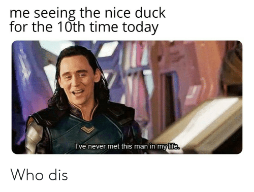 Life, Reddit, and Who Dis: me seeing the nice duck  for the 10th time today  I've never met this man in mylife  life Who dis